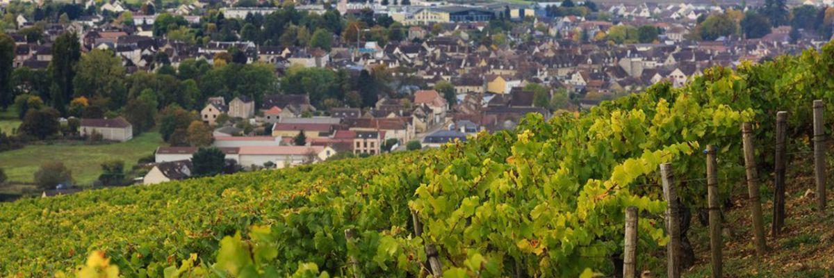 Chablis, Beaujolais : la Bourgogne, objet de toutes les convoitises