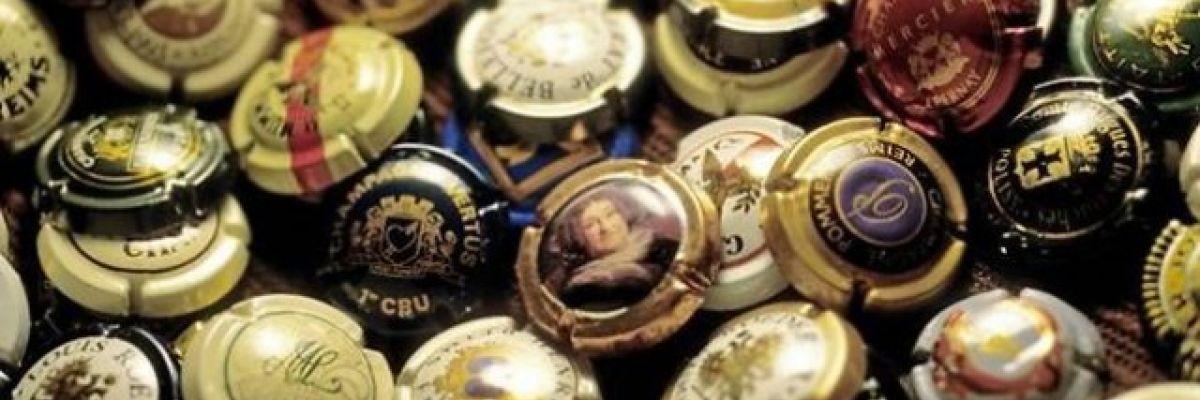 Oenographiles et Placomusophiles : les collectionneurs du vin